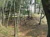 Img_1987_640x480