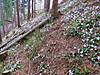 Img_2079_640x480